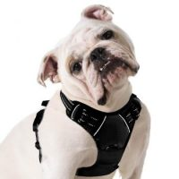 el mejor arnes para bulldog ingles Arnes ajustable y comodo para bulldog ingles con reflectantes y transpirable bulldogs
