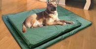 Cama ortopedica lavable con doble cara para perros 84x54x5cm