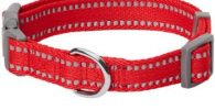collar bulldog ingles ajustable