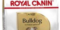 Pienso seco Royal Canin para bulldog ingles adulto 12kg comida para bulldog