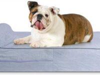 Sofa cama Memoria Viscoelastica Ortopedico 91 x 71 x 15 cm para bulldog ingles