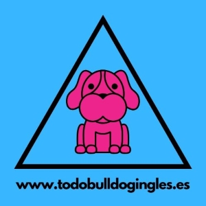 www.todobulldogingles.es