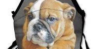 Bolso almuerzo cachorro perro Bulldog Ingles