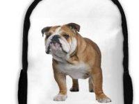Bolso de Hombro para portatil de Bulldog ingles