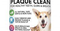 Polvo de algas Para Eliminacion de Sarro y Placa Para Perros