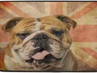 Alfombra bulldog ingles para salon con bandera UK