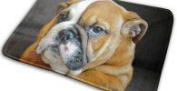 Alfombrilla ducha bulldog ingles Goma Antideslizante Lavable