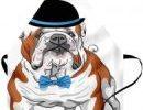 Delantal unisex con bulldog ingles elegante
