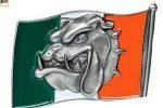 Hebilla bulldog ingles bandera irlanda english bulldog belt trucker irish flag