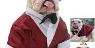 Disfraz para bulldog ingles esmoquin elegante