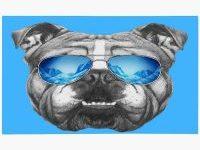 Felpudo con bulldog ingles macarra