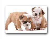 Felpudo con cachorros de bulldog inglesde poliester 60 x 40 cm
