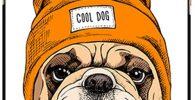 Funda Negra para iPhone 11 Carcasa de Silicona Flexible bulldog ingles cool