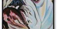 Funda para movil iPhone 7 Plus 8 de bulldog ingles