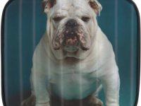Neceser bolsa de aseo bulldog ingles