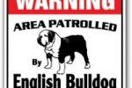 Placa Decorativa de Aluminio con Bulldog ingles
