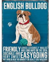 Placa Decorativa de Metal para Pared con Bulldog ingles 20 x 30 cm