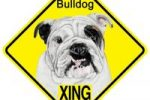 Placa decorativa de pared con bulldog ingles