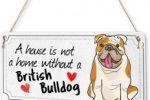 Placa metalica decorativa english bulldog