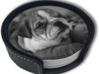 Posavasos redondos piel sintetica con diseño de bulldog ingles vintage 6 uds