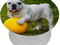 Soporte para smartphone con bulldog ingles blanco