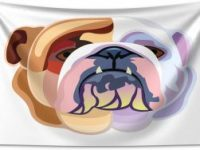 Tapiz bulldog ingles abstracto 230x140cm