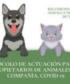 protocolo covid-19 humanos animales perros gatos coronavirus