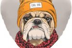 Cojin bulldog casual style con forma de corazon
