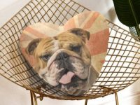 Cojin bulldog ingles con forma de corazon