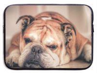 Funda English Bulldog Laptop