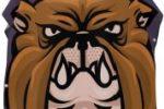 Toalla de bulldog con capucha y cambiador