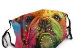 Mascarillas lavables bulldog ingles de colores