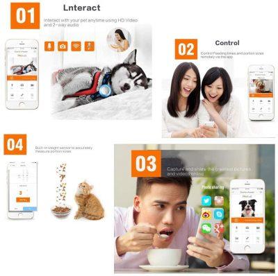 dispensador automatico de comida para perros y gatos app dispensador automatico comida perros