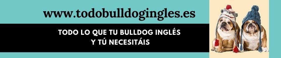 todobulldogingles.es